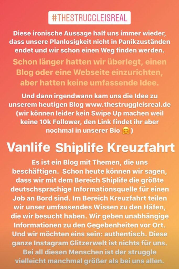 Entstehung von thestruggleisreal.de