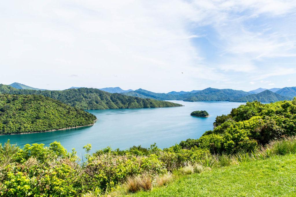 Blick auf Fjord in Neuseeland