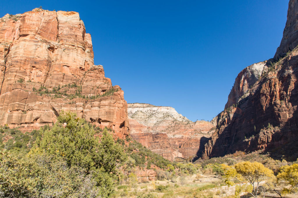 Blick im Zion Nationalpark